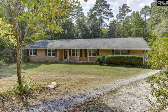 1027 Skyview Drive, Columbia, SC 29203 (MLS #481173) :: EXIT Real Estate Consultants