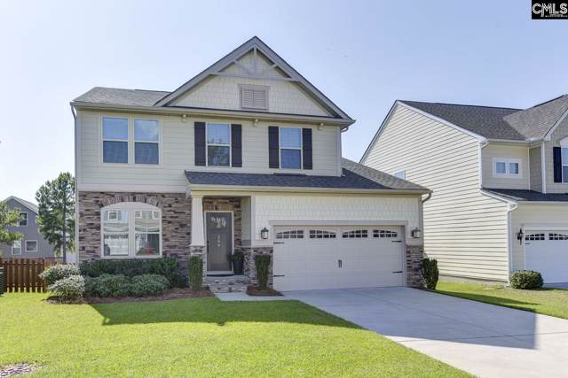 256 Placid Drive, Irmo, SC 29063 (MLS #481277) :: EXIT Real Estate Consultants
