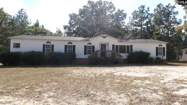 120 Stonemont Drive, Gaston, SC 29054 (MLS #481286) :: EXIT Real Estate Consultants
