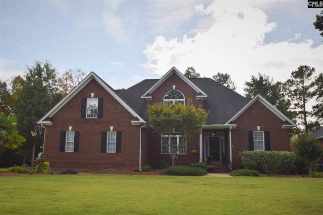 331 Sienna Drive, Chapin, SC 29036 (MLS #481365) :: EXIT Real Estate Consultants