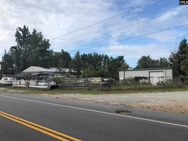 1304 Amicks Ferry Rd Road, Chapin, SC 29036 (MLS #481409) :: The Olivia Cooley Group at Keller Williams Realty