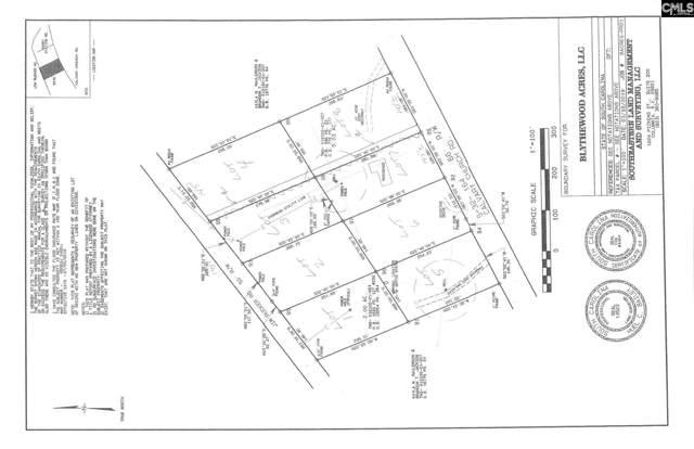802 Calvary Church Road, Swansea, SC 29160 (MLS #481477) :: EXIT Real Estate Consultants