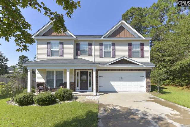 388 Peppercorn Lane, Columbia, SC 29223 (MLS #481513) :: The Meade Team
