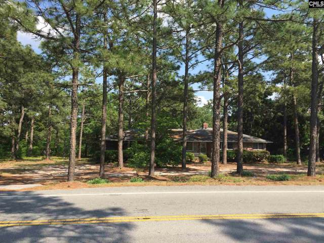 141 Saint Davids Church Road, West Columbia, SC 29170 (MLS #481578) :: EXIT Real Estate Consultants