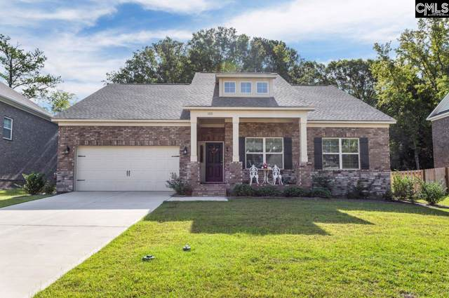 133 Cedar Chase Lane, Irmo, SC 29063 (MLS #481613) :: The Meade Team