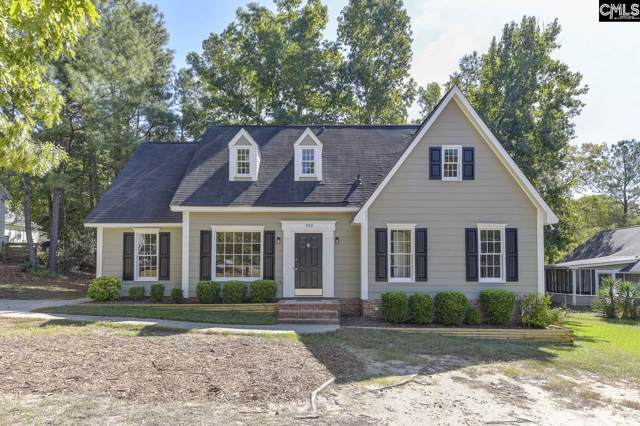 205 Dyers Hall Road, Irmo, SC 29063 (MLS #481638) :: Loveless & Yarborough Real Estate