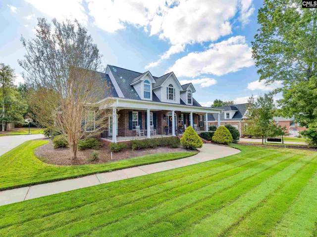24 Clay Court, Chapin, SC 29036 (MLS #481711) :: EXIT Real Estate Consultants