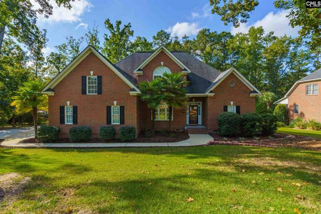 201 Lookout Pointes Drive, Chapin, SC 29036 (MLS #481714) :: EXIT Real Estate Consultants