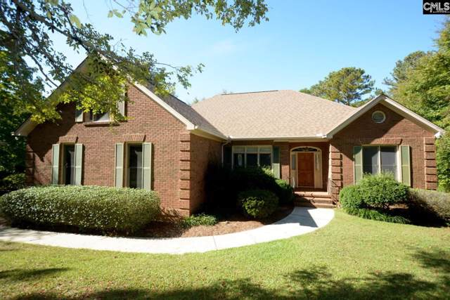 438 Highwater Court, Chapin, SC 29036 (MLS #481804) :: EXIT Real Estate Consultants