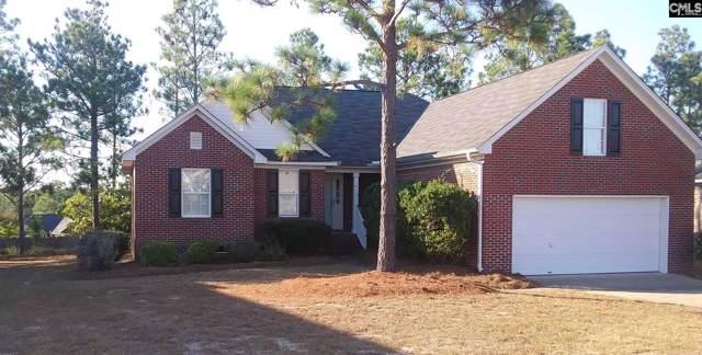 345 Summit Hills Circle, Columbia, SC 29229 (MLS #481827) :: Home Advantage Realty, LLC