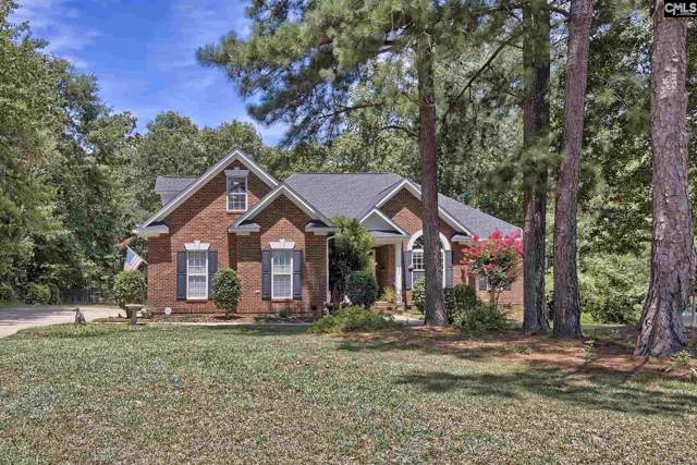 224 Talon Way, Blythewood, SC 29016 (MLS #481874) :: Loveless & Yarborough Real Estate