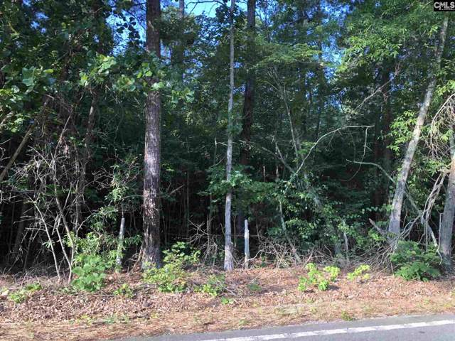 A0 Long Pine Road, Chapin, SC 29036 (MLS #481918) :: Disharoon Homes