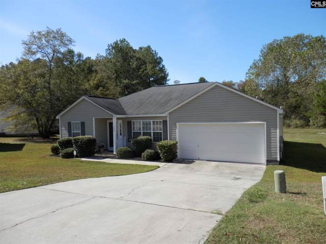 388 Cane Brake Circle, Columbia, SC 29223 (MLS #482072) :: EXIT Real Estate Consultants