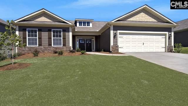 262 Woodlander Drive, Blythewood, SC 29016 (MLS #482105) :: Disharoon Homes