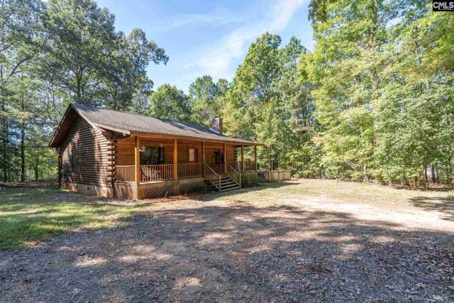 1127 St Peters Church Road, Chapin, SC 29036 (MLS #482143) :: The Olivia Cooley Group at Keller Williams Realty