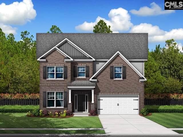 290 Pine Sapp Drive, Blythewood, SC 29016 (MLS #482152) :: EXIT Real Estate Consultants