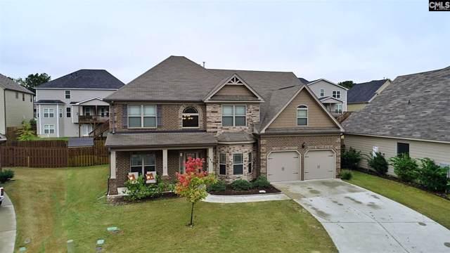 186 Grey Oaks Lane, Lexington, SC 29072 (MLS #482170) :: Home Advantage Realty, LLC