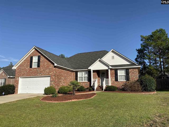 172 Oleander Mill Way, Columbia, SC 29229 (MLS #482189) :: Home Advantage Realty, LLC