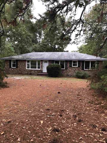 2852 Fish Hatchery Road, West Columbia, SC 29172 (MLS #482194) :: EXIT Real Estate Consultants