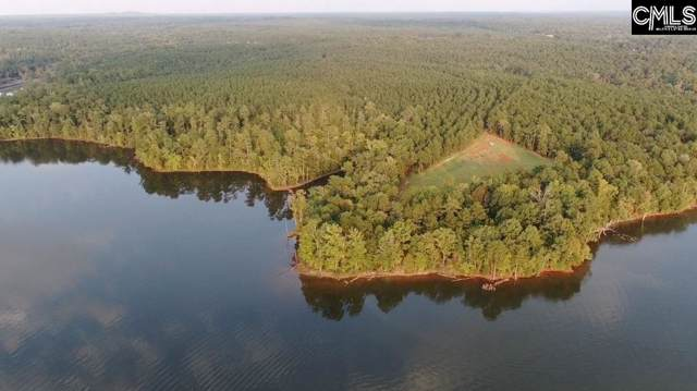 Pierce Boozer Loop Rd, Prosperity, SC 29127 (MLS #482244) :: The Olivia Cooley Group at Keller Williams Realty