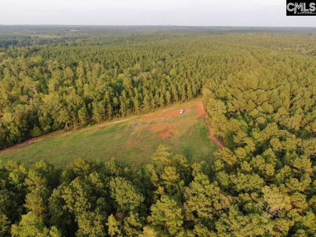 Pierce Boozer Loop Rd, Prosperity, SC 29127 (MLS #482248) :: The Olivia Cooley Group at Keller Williams Realty