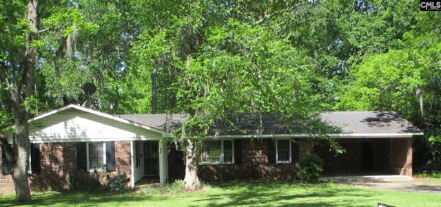 555 Googe Street, Allendale, SC 29810 (MLS #482266) :: The Olivia Cooley Group at Keller Williams Realty