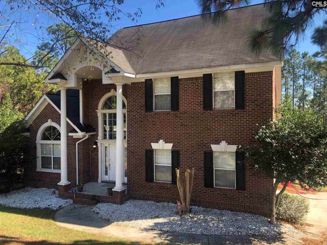 132 Genessee Valley Road, Columbia, SC 29223 (MLS #482342) :: EXIT Real Estate Consultants