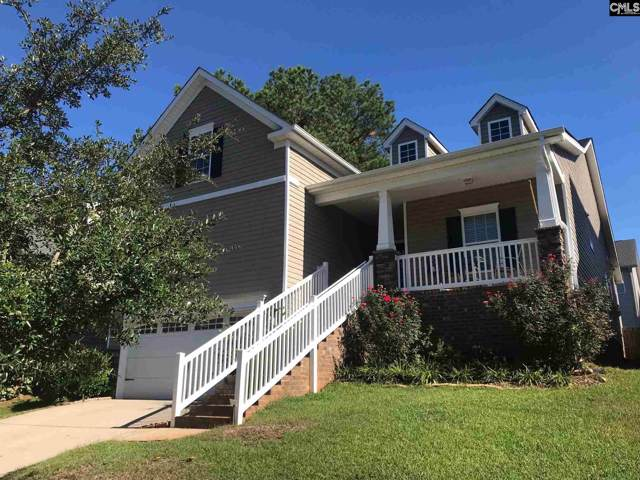220 Allenbrooke Way, Lexington, SC 29072 (MLS #482518) :: NextHome Specialists