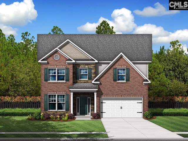 282 Pine Sapp Drive, Blythewood, SC 29016 (MLS #482528) :: The Olivia Cooley Group at Keller Williams Realty
