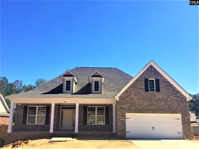 223 Cedar Hollow Lane, Irmo, SC 29063 (MLS #482603) :: The Meade Team