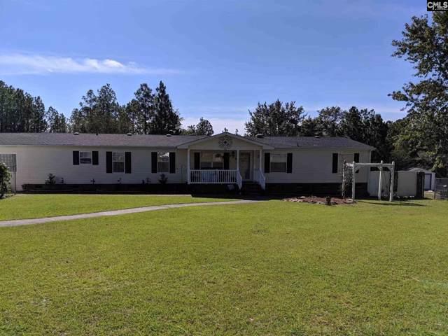 338 Mac Circle, Lexington, SC 29073 (MLS #482612) :: EXIT Real Estate Consultants