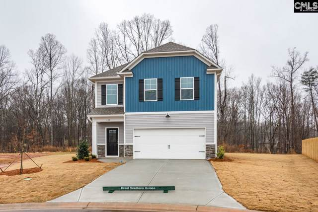 231 Coppice Lane, Columbia, SC 29223 (MLS #482727) :: The Meade Team