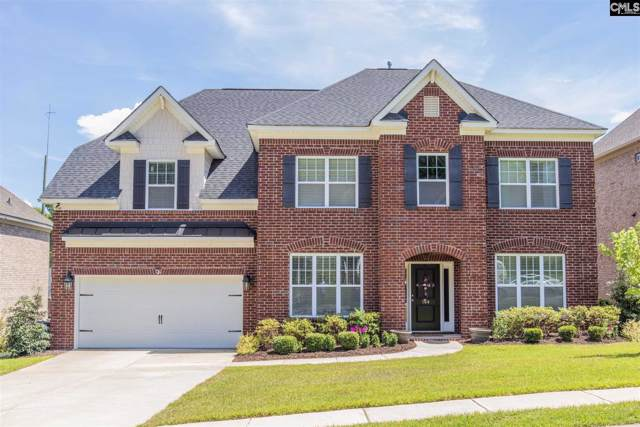 164 Dark Hollow Drive, Lexington, SC 29073 (MLS #482743) :: The Olivia Cooley Group at Keller Williams Realty