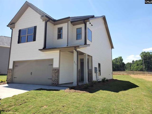 253 Bickley View Court, Chapin, SC 29036 (MLS #482794) :: EXIT Real Estate Consultants