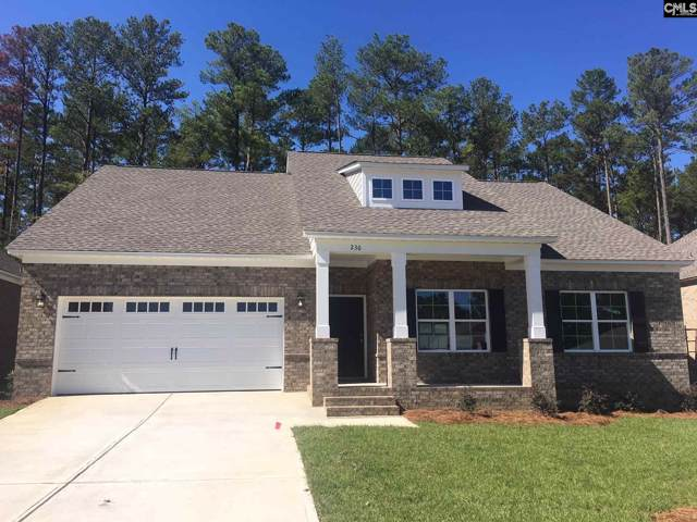 236 Cedar Hollow Lane, Irmo, SC 29063 (MLS #482805) :: The Meade Team