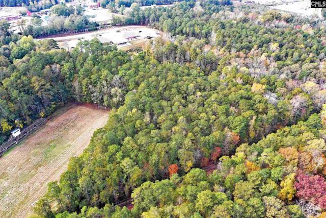 0 Pinewood Drive, Chapin, SC 29036 (MLS #482819) :: EXIT Real Estate Consultants