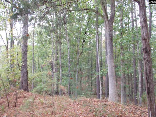 1788 Lake Road, Ridgeway, SC 29130 (MLS #482910) :: Loveless & Yarborough Real Estate