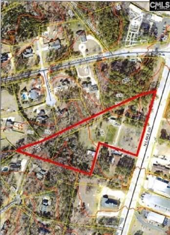1341 N Lake Drive, Lexington, SC 29072 (MLS #482934) :: EXIT Real Estate Consultants