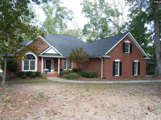 333 Rocky Meadow Drive, Gilbert, SC 29054 (MLS #482970) :: EXIT Real Estate Consultants