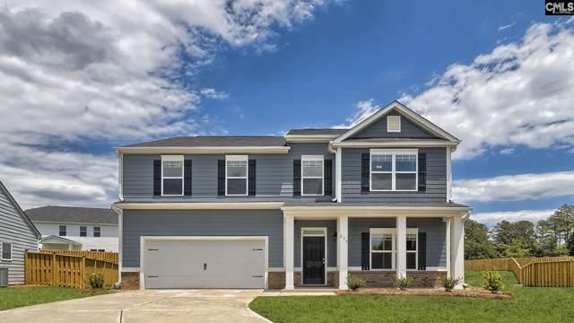 413 Rolling Shoals Court, Lexington, SC 29072 (MLS #482973) :: EXIT Real Estate Consultants