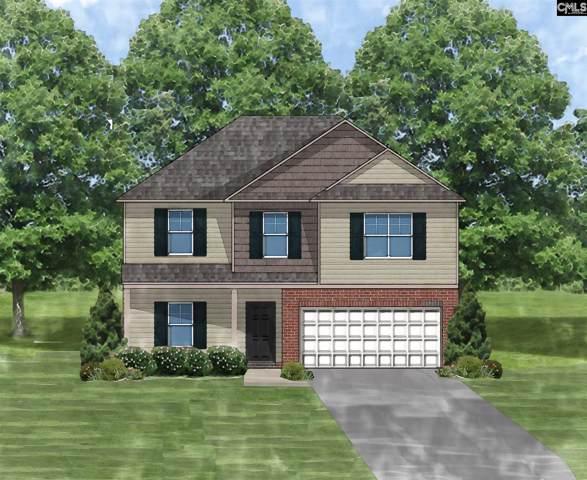46 Texas Black Way, Elgin, SC 29045 (MLS #483078) :: EXIT Real Estate Consultants