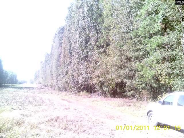 00 Moorer Road, Cameron, SC 29003 (MLS #483174) :: EXIT Real Estate Consultants