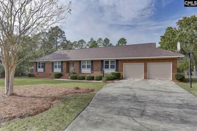 1417 Haigs Creek Drive, Elgin, SC 29045 (MLS #483215) :: EXIT Real Estate Consultants