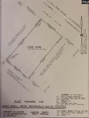 383 W Carolina Avenue, Hampton, SC 29944 (MLS #483261) :: The Olivia Cooley Group at Keller Williams Realty