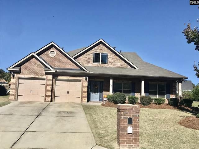 131 Swanhaven Drive, Lexington, SC 29073 (MLS #483276) :: EXIT Real Estate Consultants
