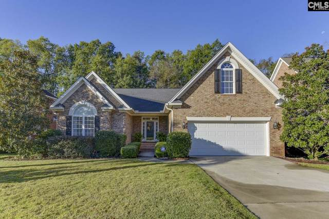 517 Village Church Drive, Chapin, SC 29036 (MLS #483355) :: EXIT Real Estate Consultants