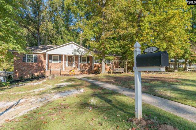301 Barmount Drive, Columbia, SC 29210 (MLS #483360) :: The Olivia Cooley Group at Keller Williams Realty