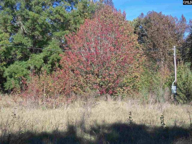 169 Pat's View Loop, Johnston, SC 29832 (MLS #483367) :: EXIT Real Estate Consultants