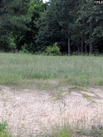 0 Green Hills Dr Tract B, Gilbert, SC 29054 (MLS #483398) :: EXIT Real Estate Consultants