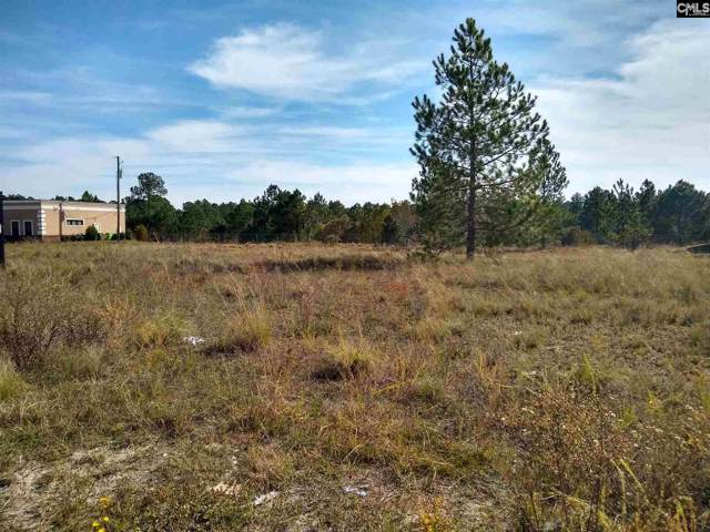 270 Graces Way, Columbia, SC 29229 (MLS #483444) :: Fabulous Aiken Homes & Lake Murray Premier Properties